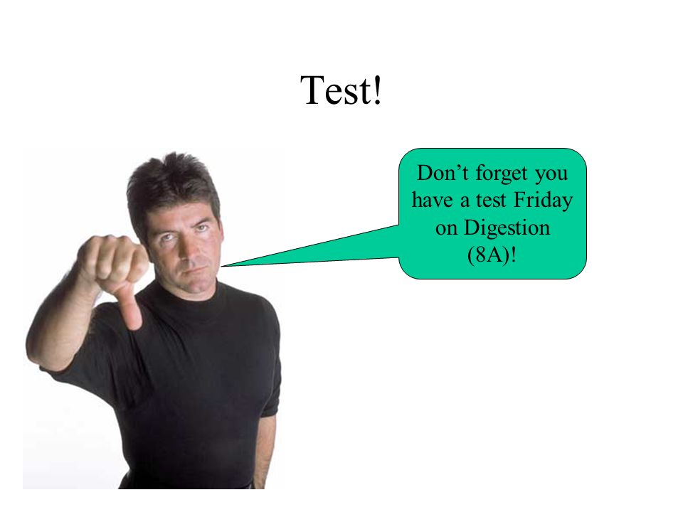 Test! Dont forget you have a test Friday on Digestion (8A)!
