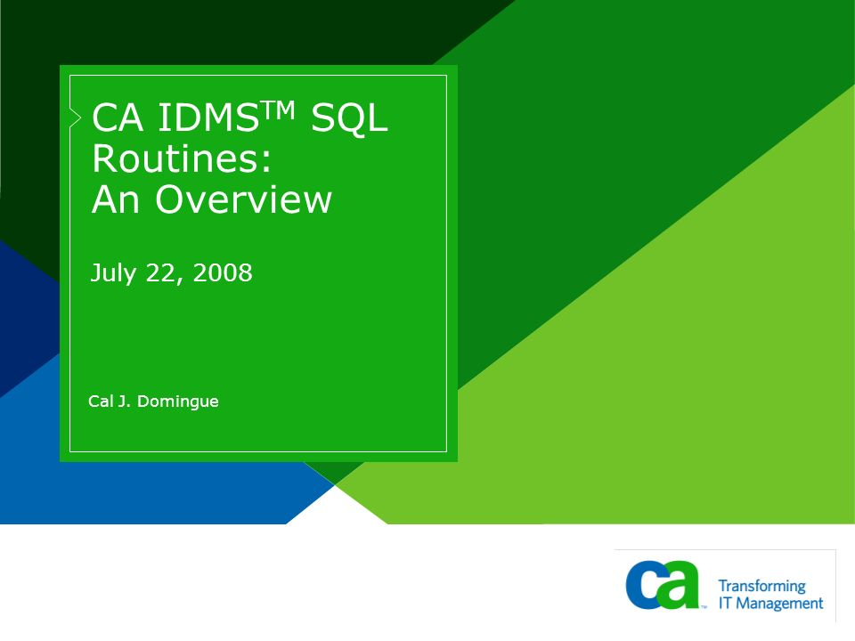 CA IDMS TM SQL Routines: An Overview July 22, 2008 Cal J. Domingue