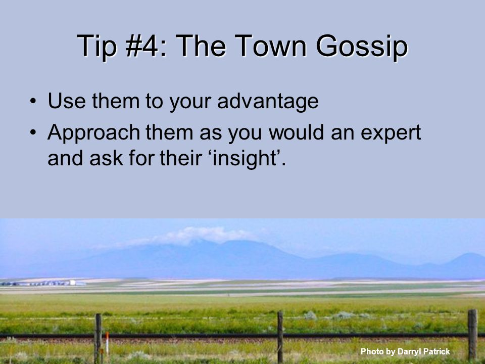 Tip #4: The Town Gossip Use them to your advantage Approach them as you would an expert and ask for their insight.