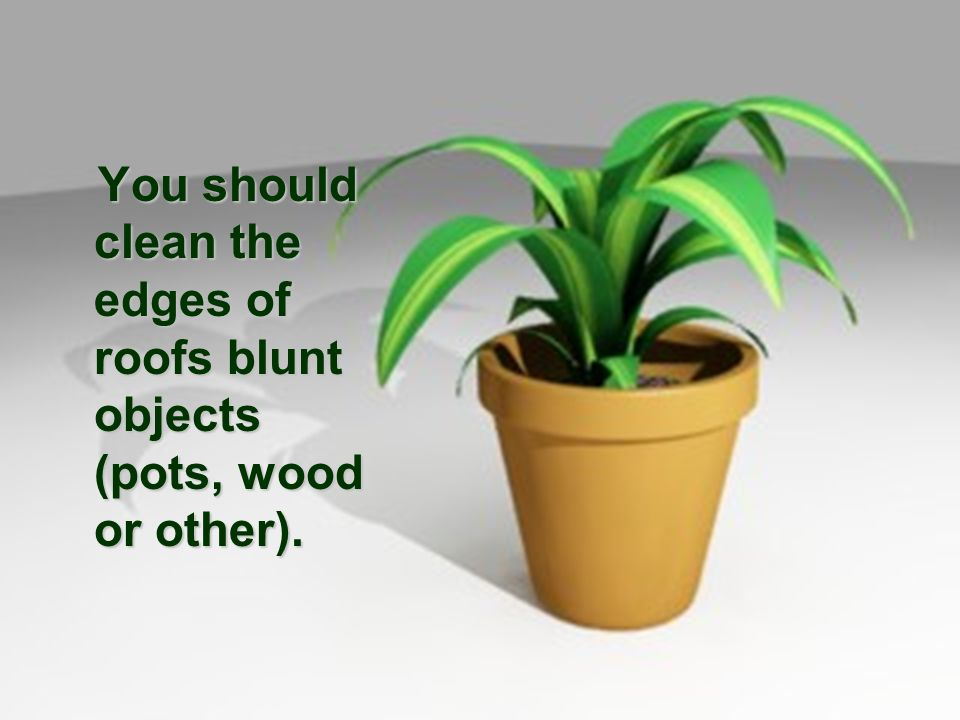 You should clean the edges of roofs blunt objects (pots, wood or other).
