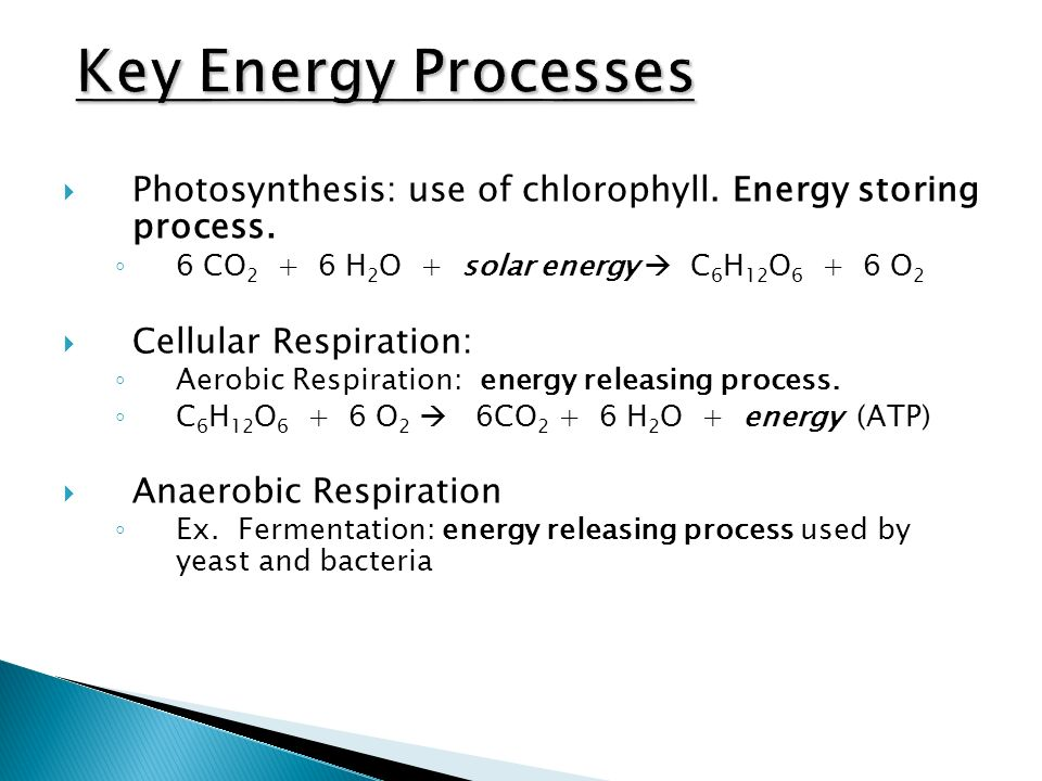 Photosynthesis: use of chlorophyll. Energy storing process.