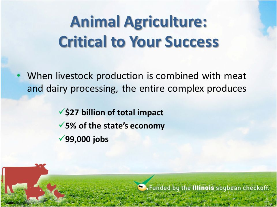 Animal Agriculture: Critical to Your Success When livestock production is combined with meat and dairy processing, the entire complex produces $27 billion of total impact 5% of the states economy 99,000 jobs