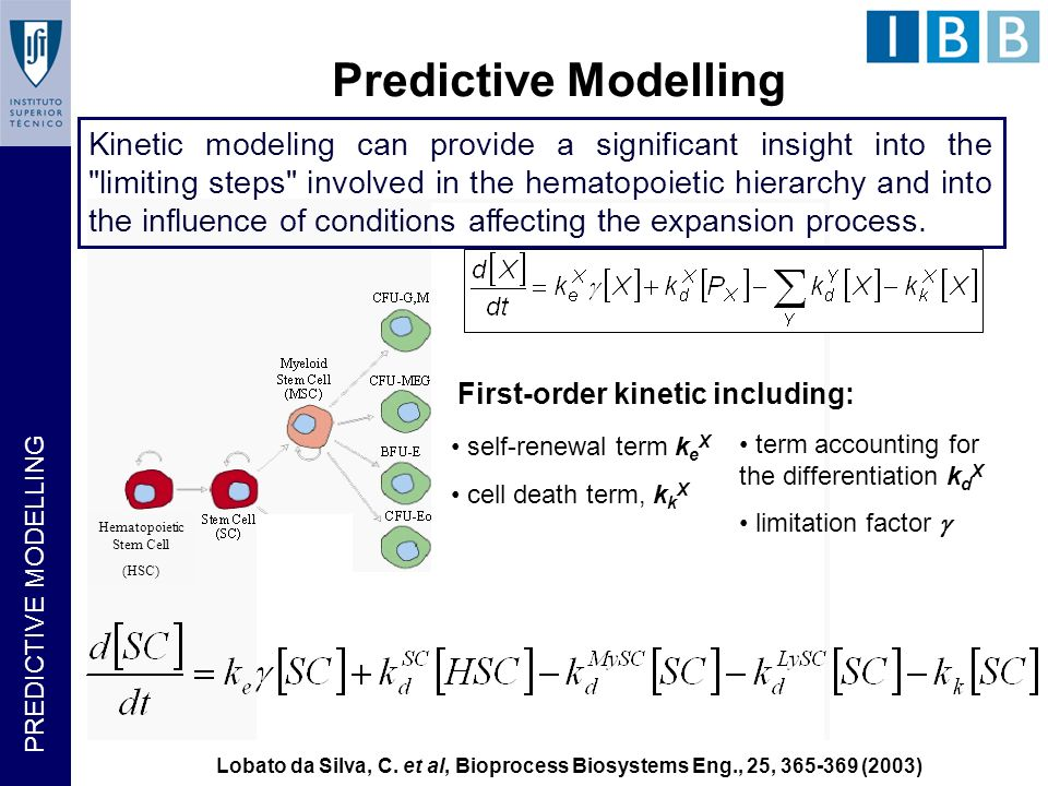 Hematopoietic Stem Cell (HSC) Predictive Modelling Predictive Modeling self-renewal term k e X cell death term, k k X term accounting for the differentiation k d X limitation factor First-order kinetic including: Kinetic modeling can provide a significant insight into the limiting steps involved in the hematopoietic hierarchy and into the influence of conditions affecting the expansion process.