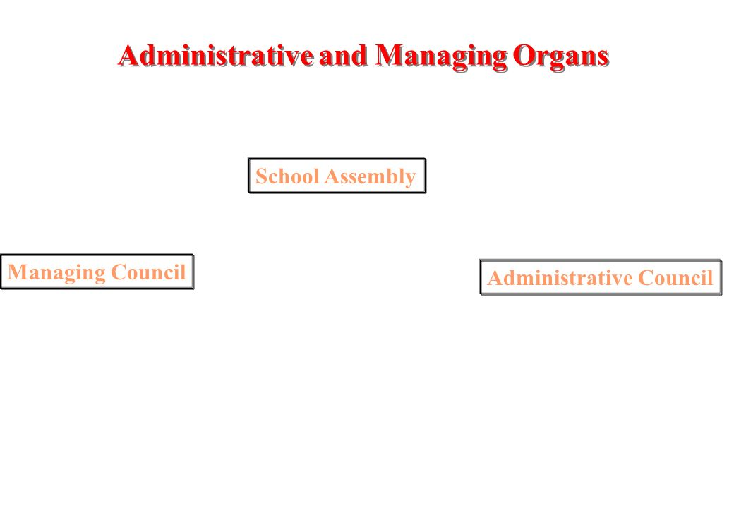 School Group of Cuba Administrative and Managing Organs, Establishment Co-ordination, Structures of Educational Organisation and Specialised Systems of Educational Support