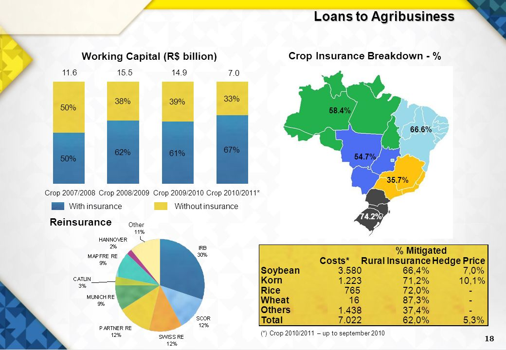 18 Without insuranceWith insurance Crop Insurance Breakdown - % Working Capital (R$ billion) 58.4% 66.6% 54.7% 35.7% 74.2% Reinsurance Loans to Agribusiness Other 50% 62% 61% 67% 50% 38% 39% 33% Crop 2007/2008Crop 2008/2009Crop 2009/2010Crop 2010/2011* Costs*Rural InsuranceHedge Price Soybean ,4%7,0% Korn ,2%10,1% Rice 76572,0%- Wheat 1687,3%- Others ,4%- Total ,0%5,3% % Mitigated (*) Crop 2010/2011 – up to september 2010