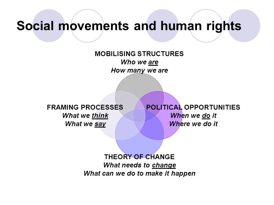 MOBILISING STRUCTURES Who we are How many we are POLITICAL OPPORTUNITIES When we do it Where we do it THEORY OF CHANGE What needs to change What can we do to make it happen FRAMING PROCESSES What we think What we say Social movements and human rights