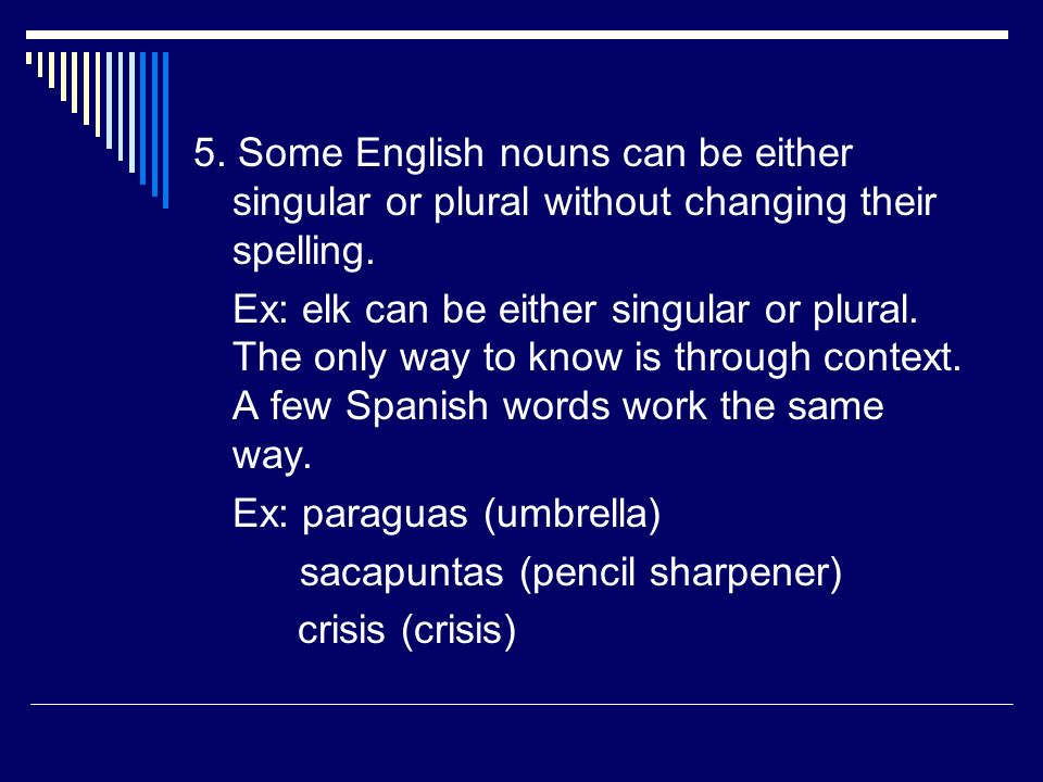 5. Some English nouns can be either singular or plural without changing their spelling.