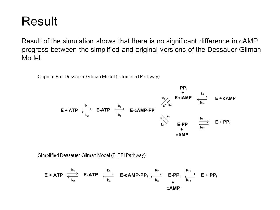 Original Full Dessauer-Gilman Model (Bifurcated Pathway) Simplified Dessauer-Gilman Model (E-PPi Pathway) Result Result of the simulation shows that there is no significant difference in cAMP progress between the simplified and original versions of the Dessauer-Gilman Model.