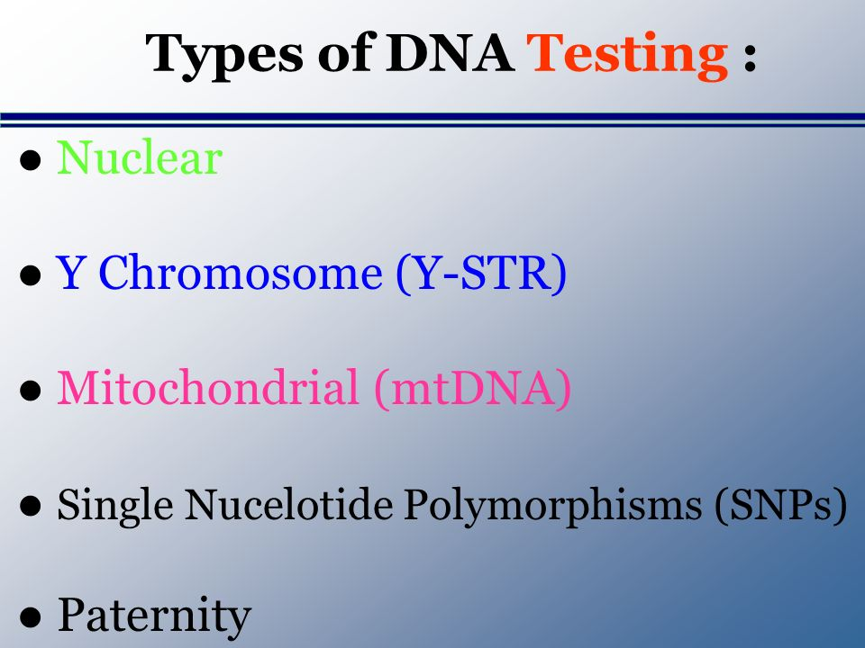 Types of DNA Testing : Nuclear Y Chromosome (Y-STR) Mitochondrial (mtDNA) Single Nucelotide Polymorphisms (SNPs) Paternity