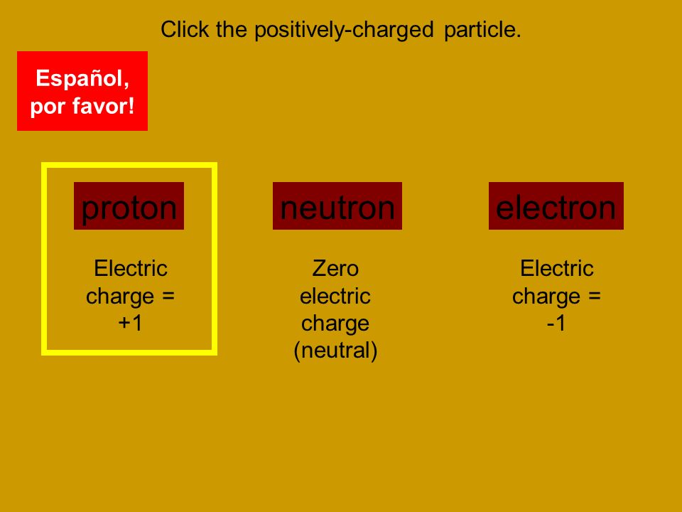 Click the positively-charged particle.