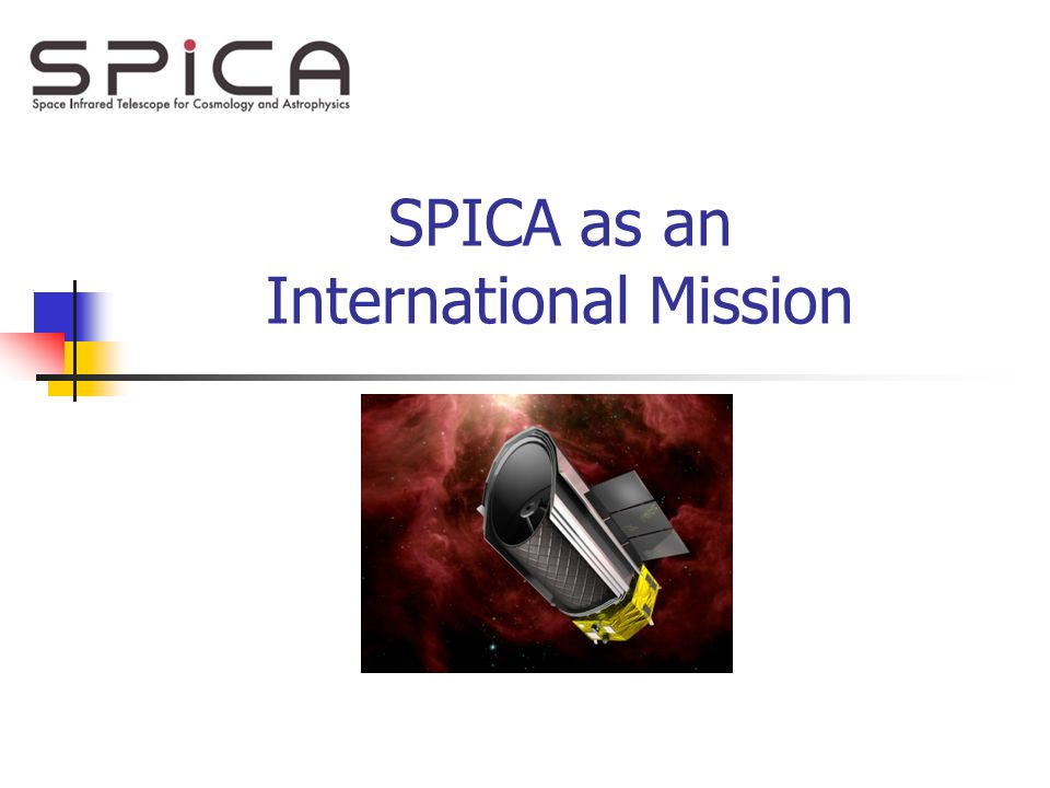 SPICA as an International Mission
