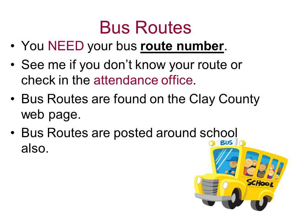 Bus Routes You NEED your bus route number.