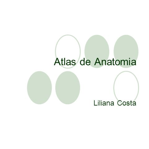 Atlas de Anatomia Liliana Costa