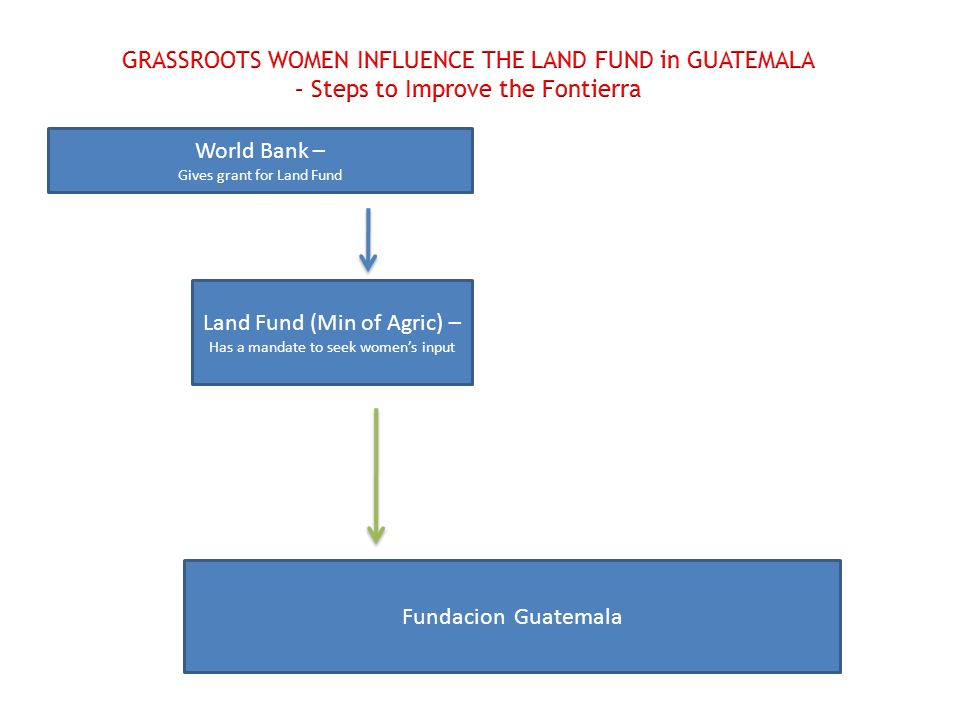 World Bank – Gives grant for Land Fund Land Fund (Min of Agric) – Has a mandate to seek womens input Fundacion Guatemala