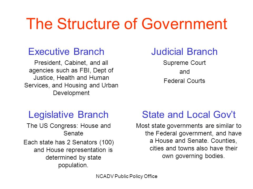 NCADV Public Policy Office The Structure of Government Executive Branch President, Cabinet, and all agencies such as FBI, Dept of Justice, Health and Human Services, and Housing and Urban Development Judicial Branch Supreme Court and Federal Courts State and Local Govt Most state governments are similar to the Federal government, and have a House and Senate.