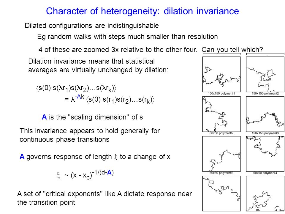 Character of heterogeneity: dilation invariance Dilated configurations are indistinguishable Eg random walks with steps much smaller than resolution 4 of these are zoomed 3x relative to the other four.