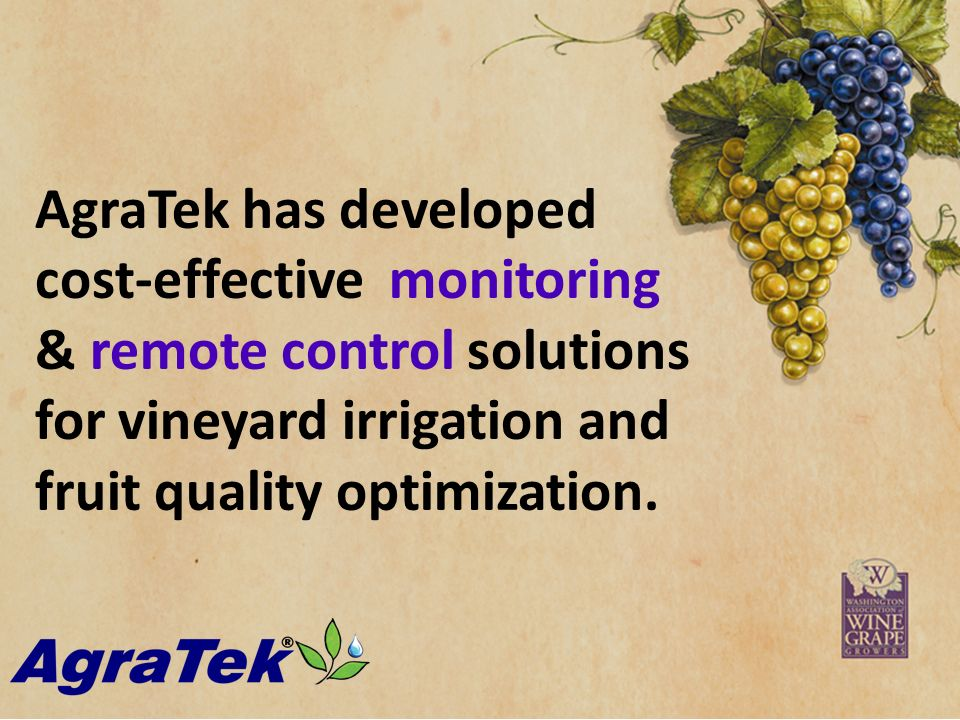 Click to edit Master subtitle style AgraTek has developed cost-effective monitoring & remote control solutions for vineyard irrigation and fruit quality optimization.