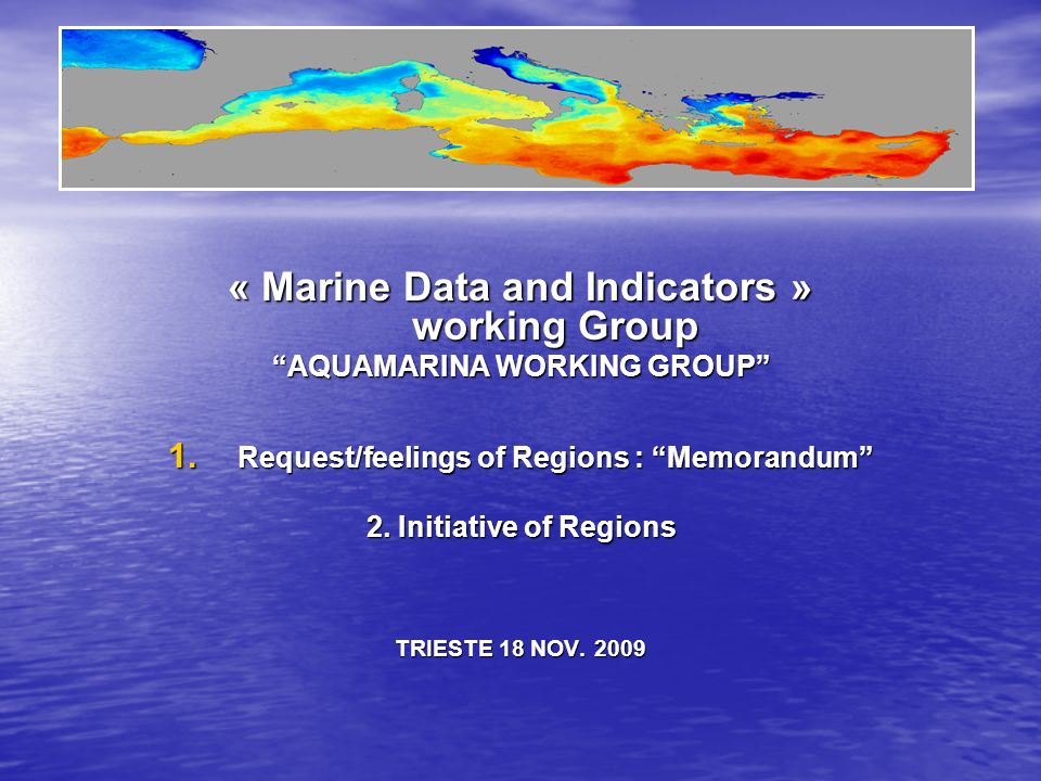 « Marine Data and Indicators » working Group AQUAMARINA WORKING GROUP 1.