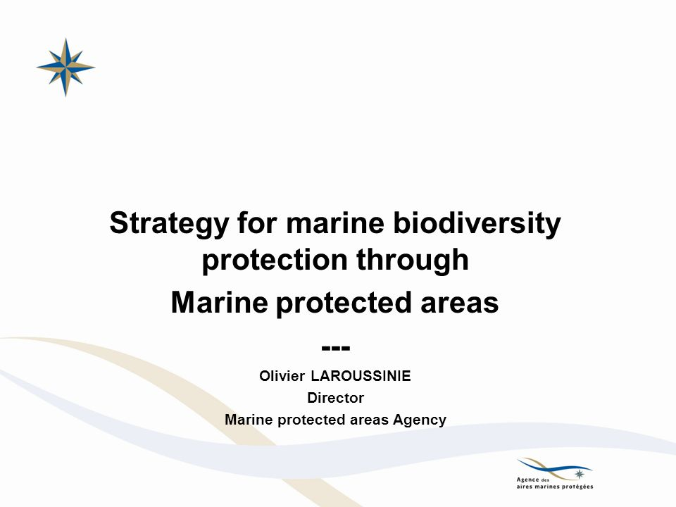 Strategy for marine biodiversity protection through Marine protected areas --- Olivier LAROUSSINIE Director Marine protected areas Agency