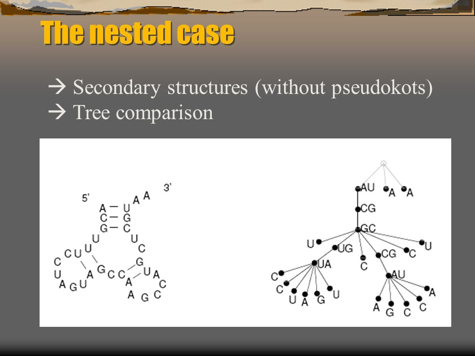 The nested case Secondary structures (without pseudokots) Tree comparison