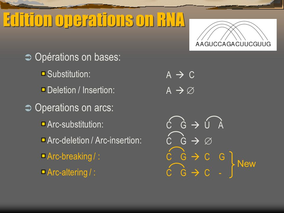 Opérations on bases: Substitution: Deletion / Insertion: Operations on arcs: Arc-substitution: Arc-deletion / Arc-insertion: Arc-breaking / : Arc-altering / : A C A C G U A C G C G C - Edition operations on RNA New