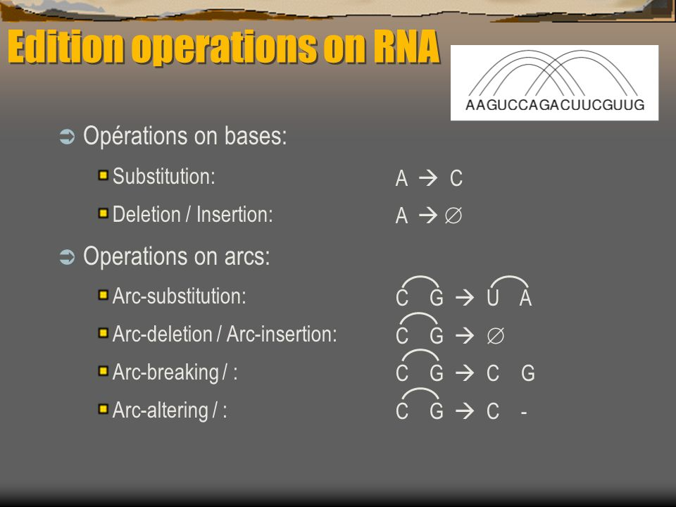 Edition operations on RNA Opérations on bases: Substitution: Deletion / Insertion: Operations on arcs: Arc-substitution: Arc-deletion / Arc-insertion: Arc-breaking / : Arc-altering / : A C A C G U A C G C G C -