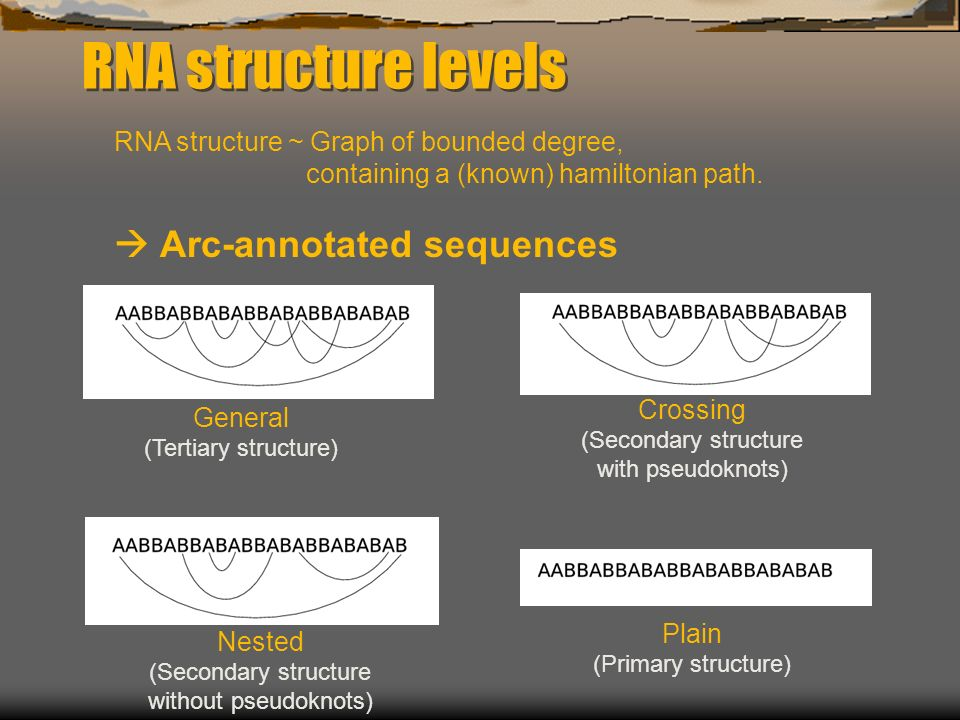 RNA structure levels RNA structure ~ Graph of bounded degree, containing a (known) hamiltonian path.