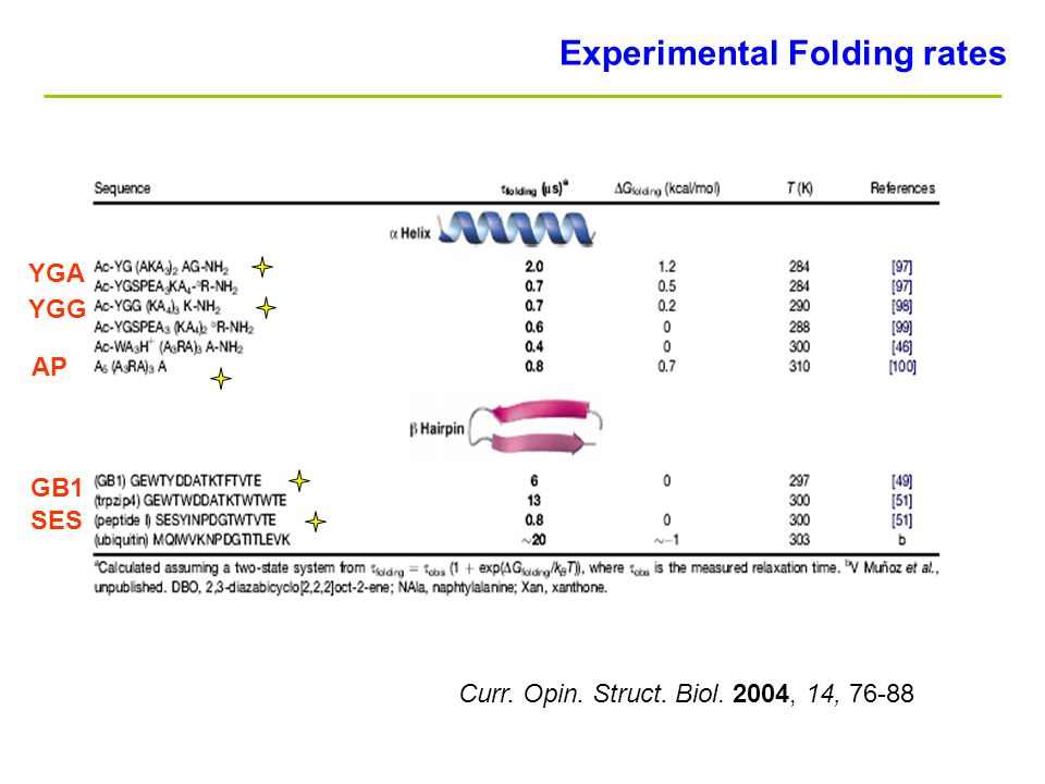 Curr. Opin. Struct. Biol. 2004, 14, GB1 SES AP YGG YGA Experimental Folding rates