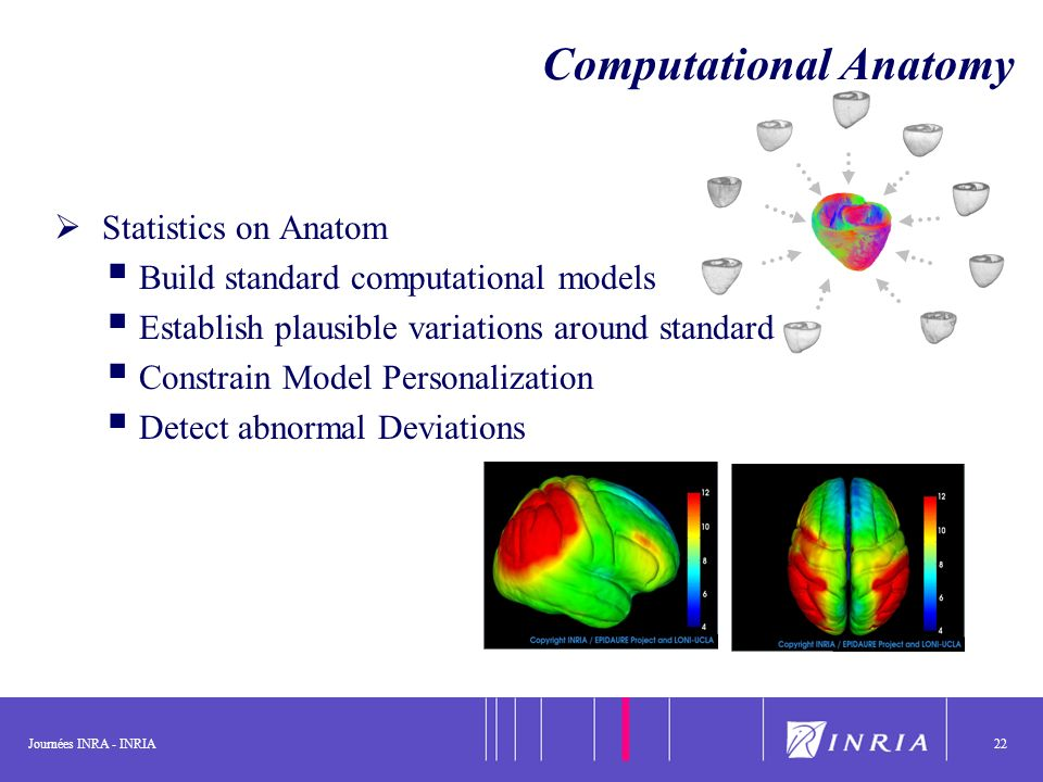 Journées INRA - INRIA22 Computational Anatomy Statistics on Anatom Build standard computational models Establish plausible variations around standards Constrain Model Personalization Detect abnormal Deviations