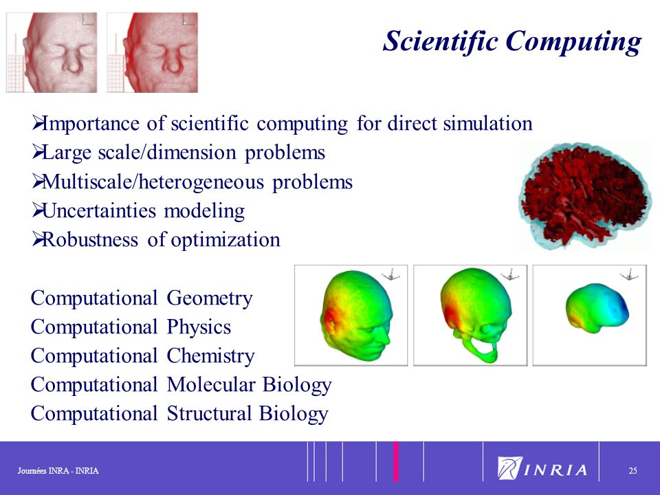 Journées INRA - INRIA25 Scientific Computing Importance of scientific computing for direct simulation Large scale/dimension problems Multiscale/heterogeneous problems Uncertainties modeling Robustness of optimization Computational Geometry Computational Physics Computational Chemistry Computational Molecular Biology Computational Structural Biology