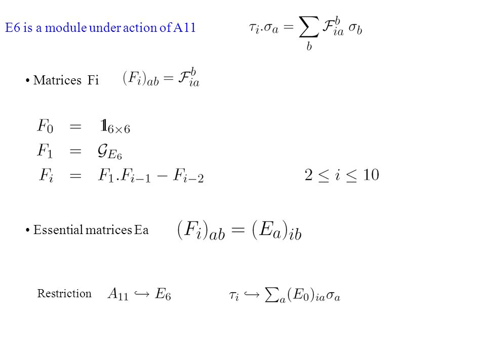 E6 is a module under action of A11 Restriction Matrices Fi Essential matrices Ea