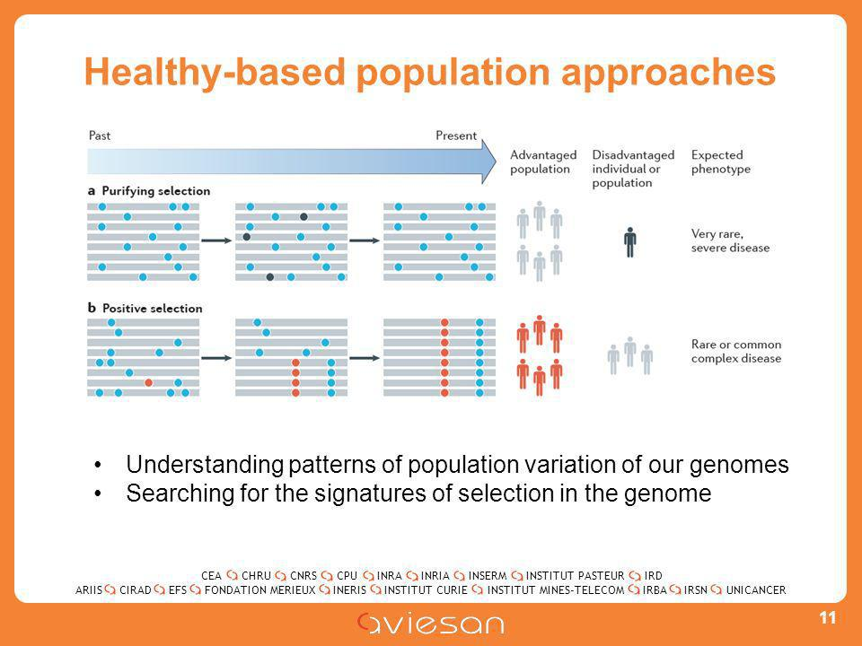 CEACHRUCNRSCPUINRAINRIAINSERMINSTITUT PASTEURIRD ARIISEFSINERISINSTITUT CURIEINSTITUT MINES-TELECOMUNICANCERIRBAIRSNCIRADFONDATION MERIEUX Healthy-based population approaches 11 Understanding patterns of population variation of our genomes Searching for the signatures of selection in the genome