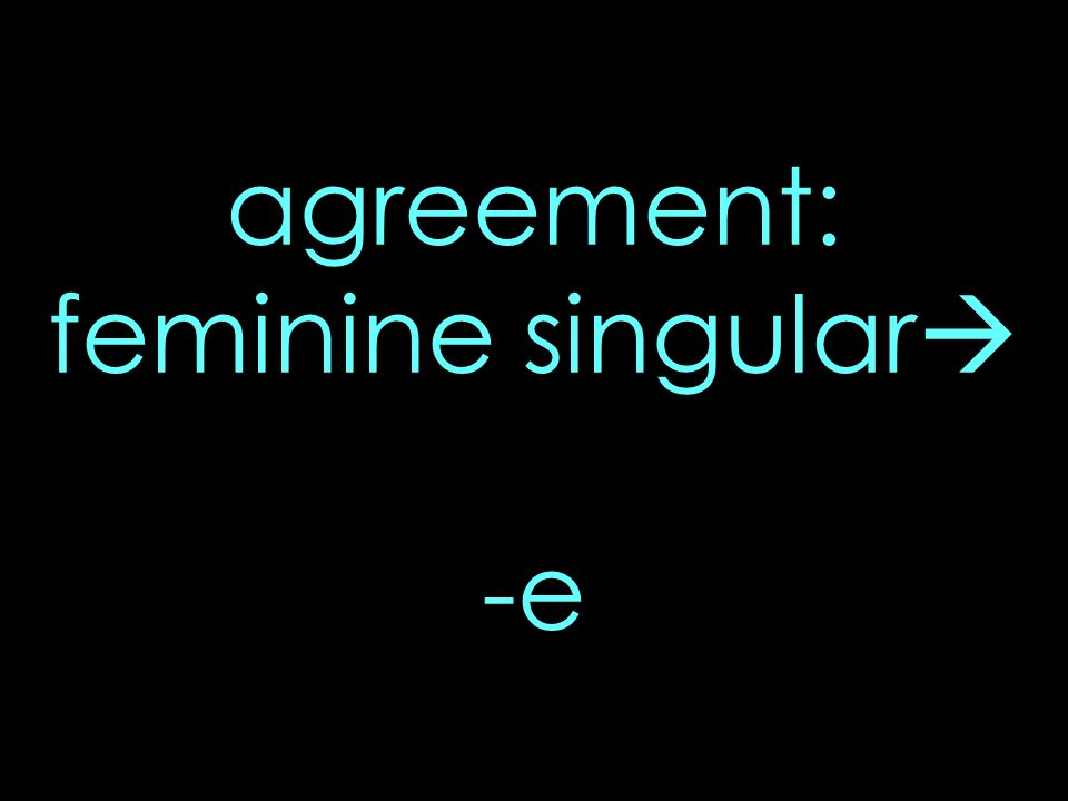 agreement: feminine singular -e