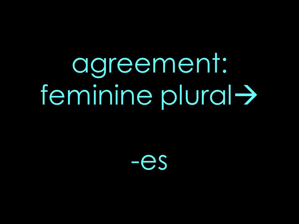 agreement: feminine plural -es