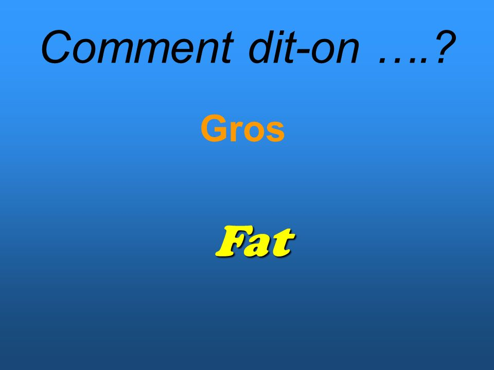 Comment dit-on …. Gros Fat