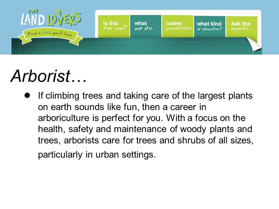 Arborist… If climbing trees and taking care of the largest plants on earth sounds like fun, then a career in arboriculture is perfect for you.