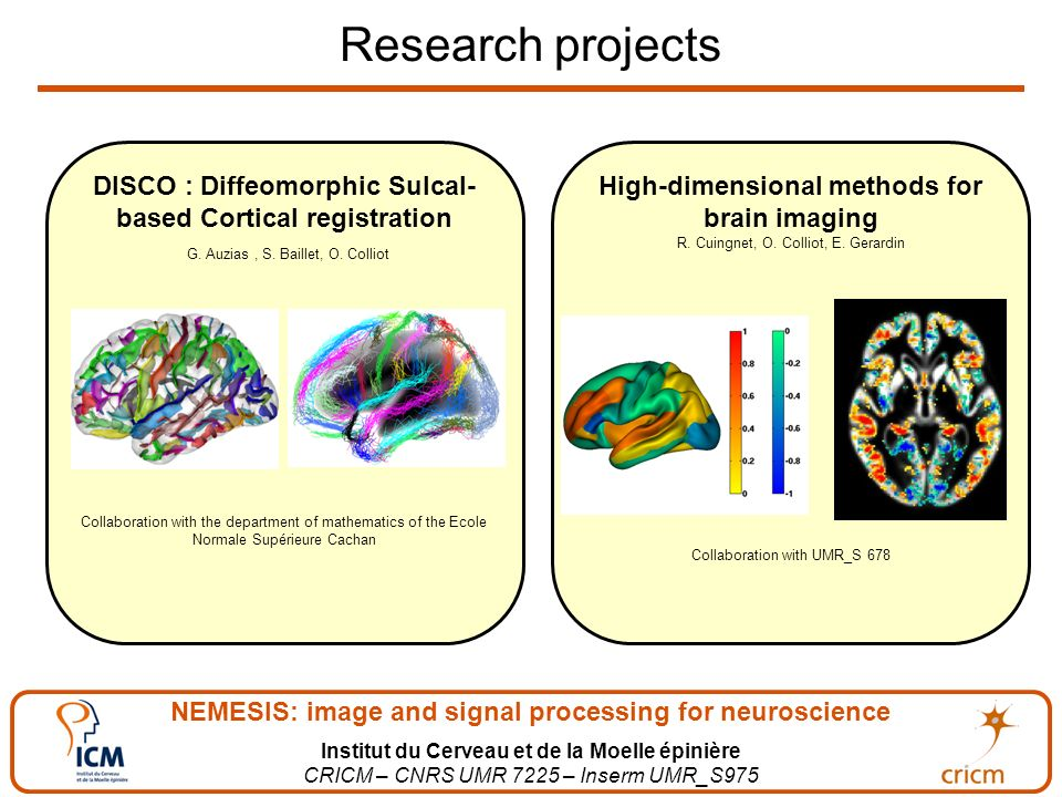 NEMESIS: image and signal processing for neuroscience Institut du Cerveau et de la Moelle épinière CRICM – CNRS UMR 7225 – Inserm UMR_S975 Research projects High-dimensional methods for brain imaging R.