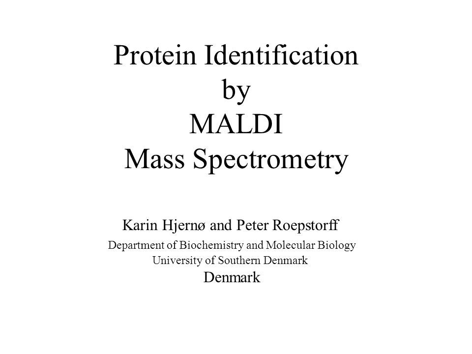 Protein Identification by MALDI Mass Spectrometry Karin Hjernø and Peter Roepstorff Department of Biochemistry and Molecular Biology University of Southern Denmark Denmark
