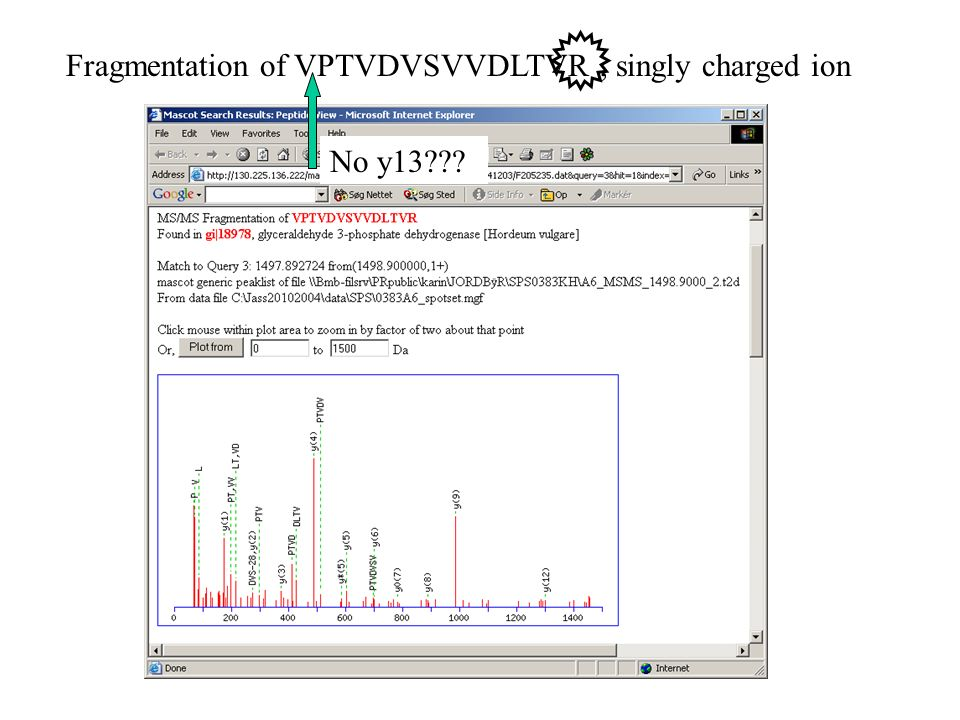 Fragmentation of VPTVDVSVVDLTVR, singly charged ion No y13