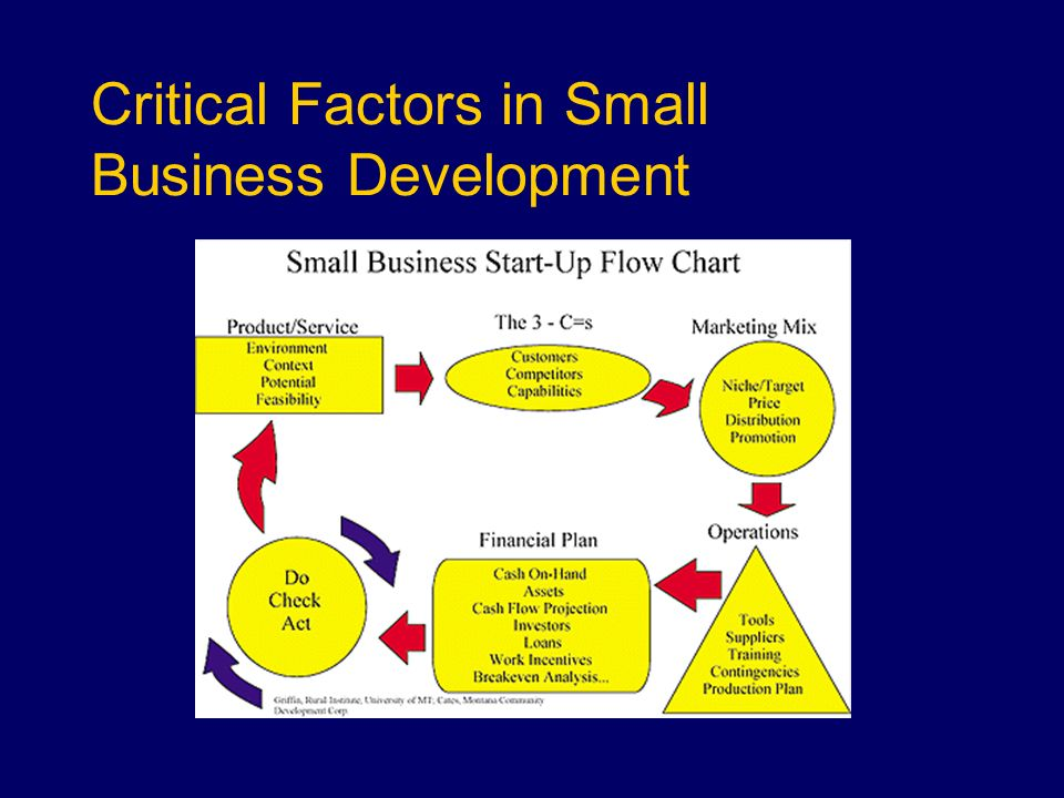 Critical Factors in Small Business Development