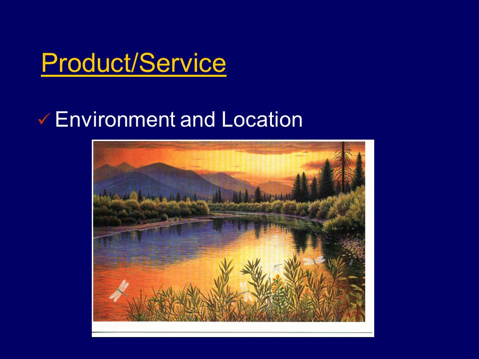 Product/Service Environment and Location