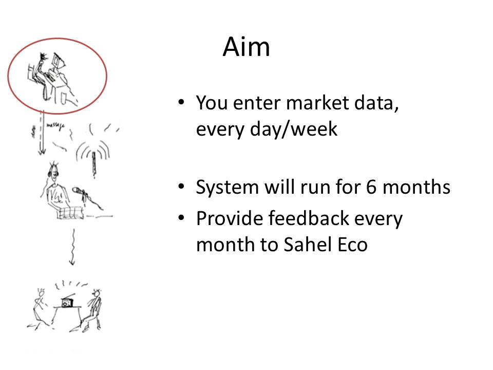 Aim You enter market data, every day/week System will run for 6 months Provide feedback every month to Sahel Eco