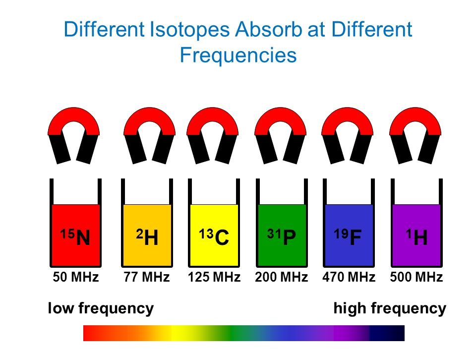 Different Isotopes Absorb at Different Frequencies low frequencyhigh frequency 15 N 2H2H 13 C 19 F 1H1H 50 MHz 77 MHz 125 MHz 200 MHz 470 MHz 500 MHz 31 P