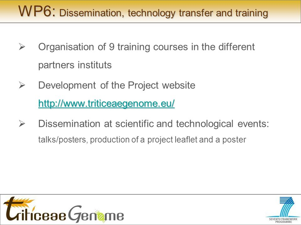 WP6: Dissemination, technology transfer and training Organisation of 9 training courses in the different partners instituts     Development of the Project website     Dissemination at scientific and technological events: talks/posters, production of a project leaflet and a poster
