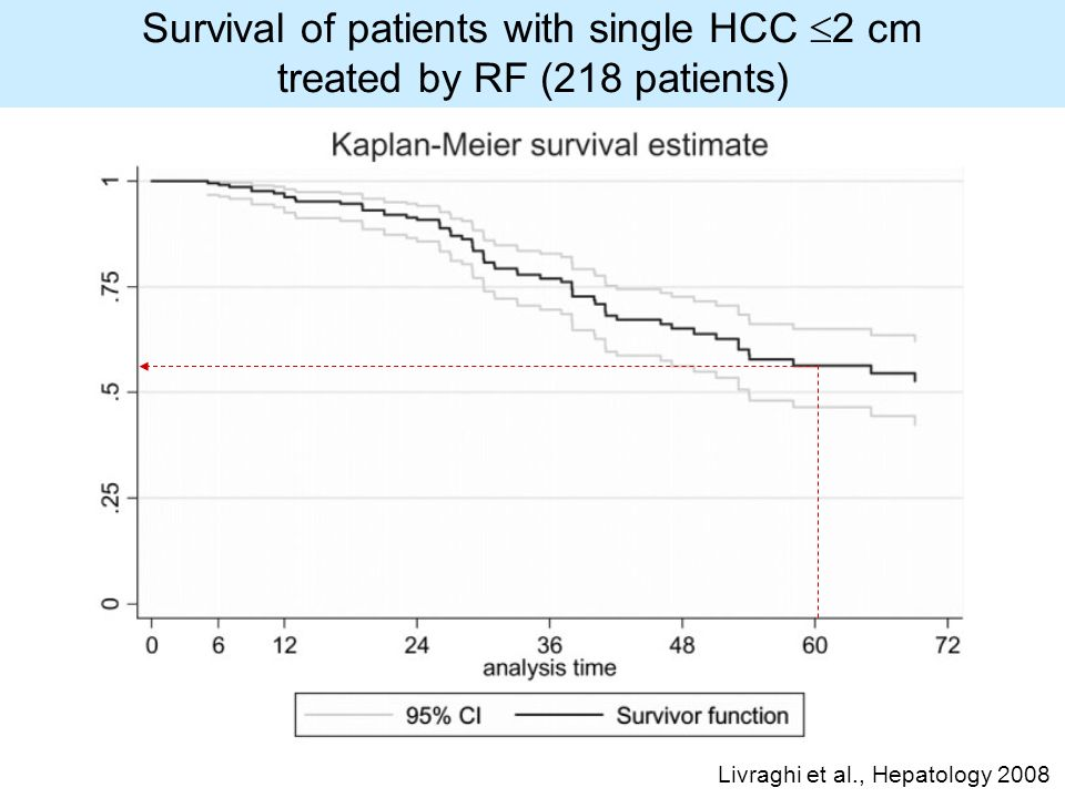 Survival of patients with single HCC 2 cm treated by RF (218 patients) Livraghi et al., Hepatology 2008