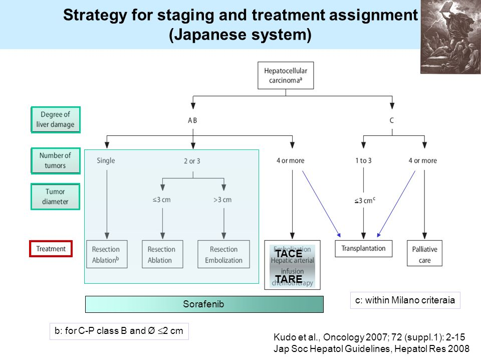 Strategy for staging and treatment assignment (Japanese system) Kudo et al., Oncology 2007; 72 (suppl.1): 2-15 Jap Soc Hepatol Guidelines, Hepatol Res 2008 Sorafenib b: for C-P class B and Ø 2 cm c: within Milano criteraia TACE TARE