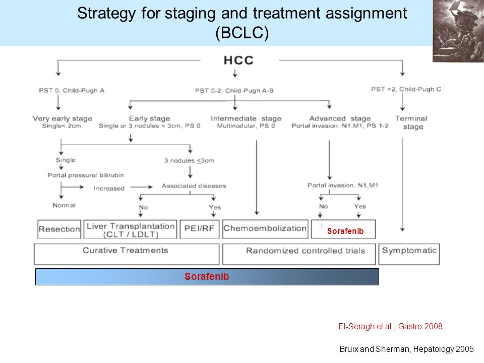 Strategy for staging and treatment assignment (BCLC) Bruix and Sherman, Hepatology 2005 Sorafenib El-Seragh et al., Gastro 2008 Sorafenib