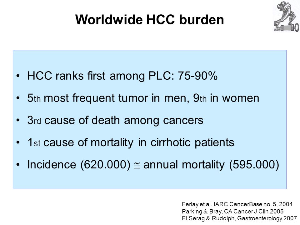 Worldwide HCC burden HCC ranks first among PLC: 75-90% 5 th most frequent tumor in men, 9 th in women 3 rd cause of death among cancers 1 st cause of mortality in cirrhotic patients Incidence ( ) annual mortality ( ) Ferlay et al.