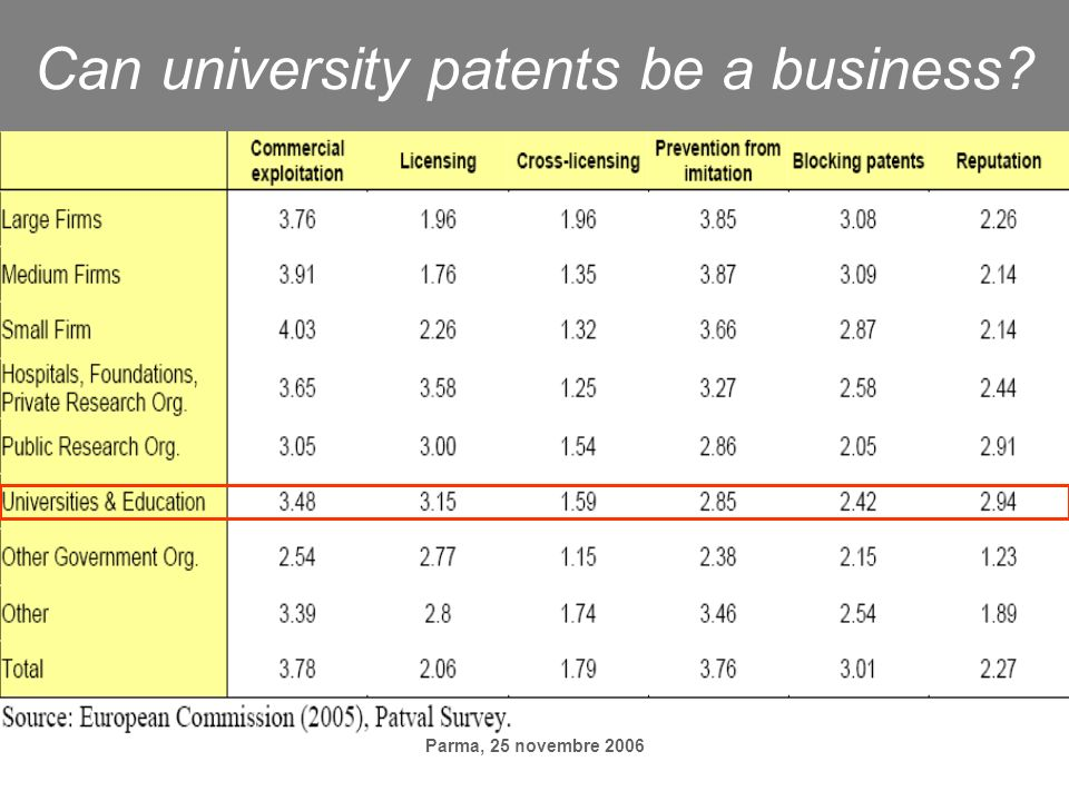 Parma, 25 novembre 2006 Can university patents be a business