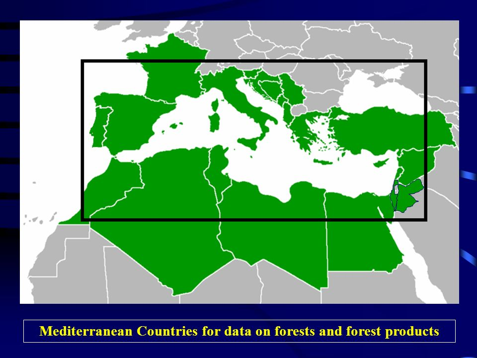Mediterranean Countries for data on forests and forest products
